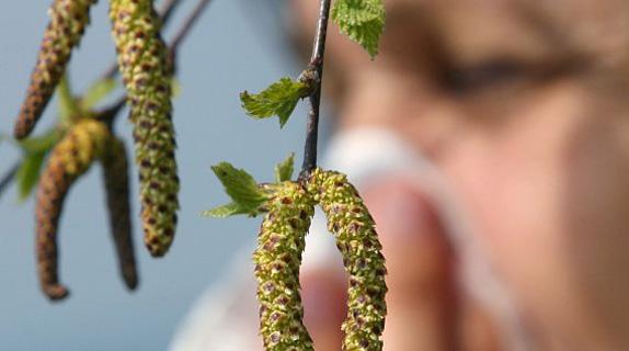 Сезонные аллергические заболевания