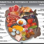 продукты содержащие холестерин